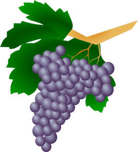 grapes-159820_960_720