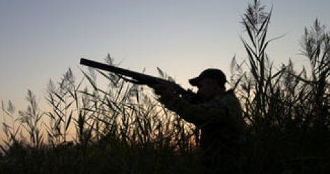 Arrêté préfectoral pour l'ouverture et la fermeture de la chasse
